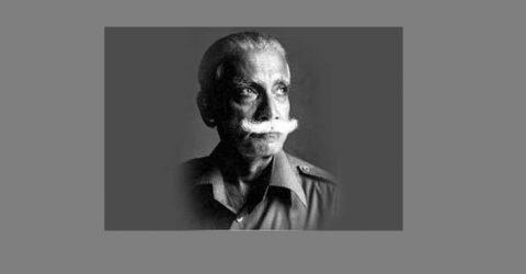 স্যালুট টু ওসমানী: লুৎফুর রহমান